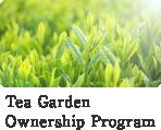 Tea Garden Ownership Program