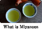 What is Miyanoen