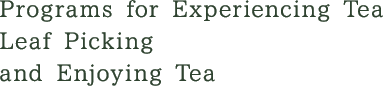 Programs for Experiencing Tea Leaf Picking and Enjoying Tea