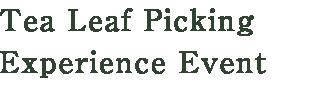 Tea Leaf Picking Experience Event