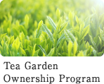 Tea Garden Ownership Program