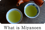 What is Miyanoen